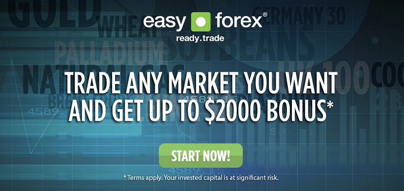 Easy forex languages